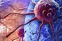 Picture of Cancer Immunotherapy: Building on Initial Successes to Improve Clinical Outcomes